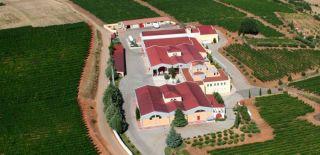 Κτήμα Λαζαρίδη: Μειωμένος κατά 14,8% ο τζίρος το πρώτο εξάμηνο